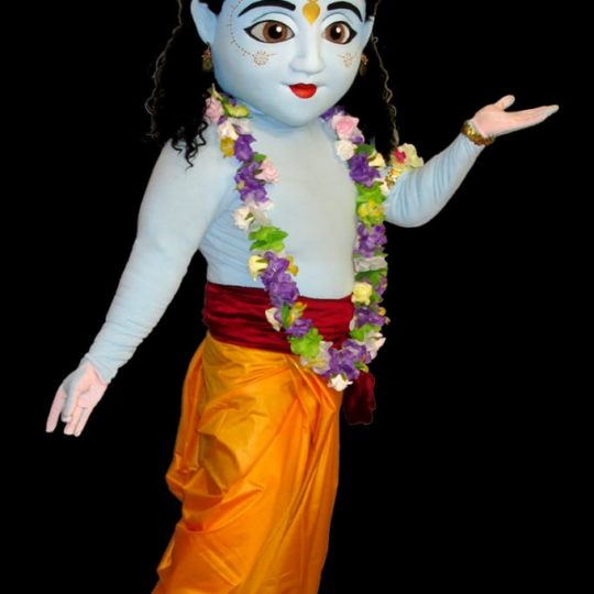https://www.themascotmakers.com/wp-content/uploads/2020/06/UF-Lord-Krishna-Mascot-540x540.jpg